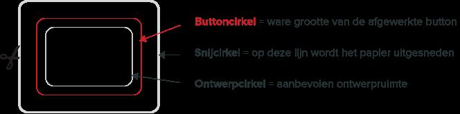 button-anatomie